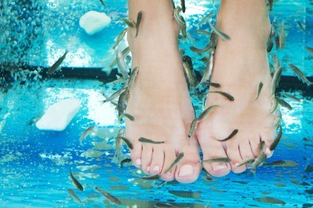 Wobeauty: fish pedicure e manicure