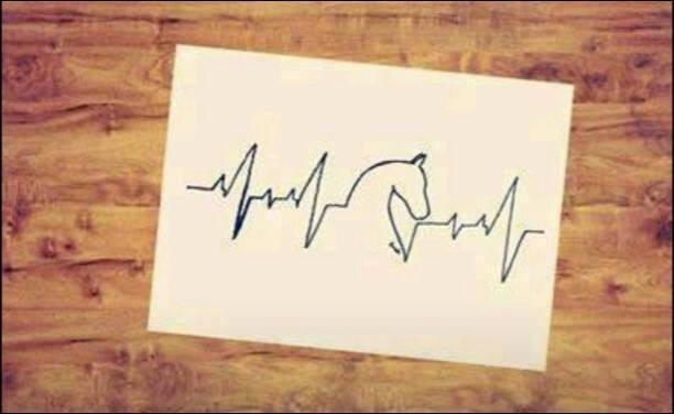 Cardiogramma di un'appassionato di cavalli: il cuore oltre l'ostacolo!