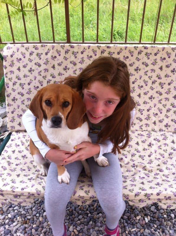 Sarah e Luna (beagle)