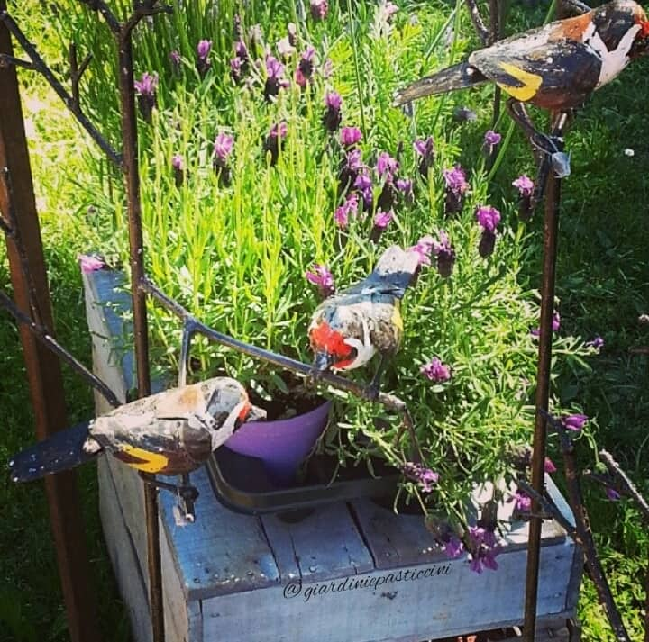 Tre giorni per il giardino a Masino