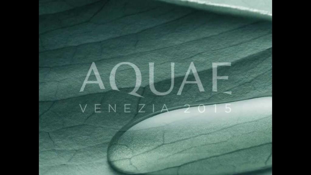 Aquae-Venezia-2015