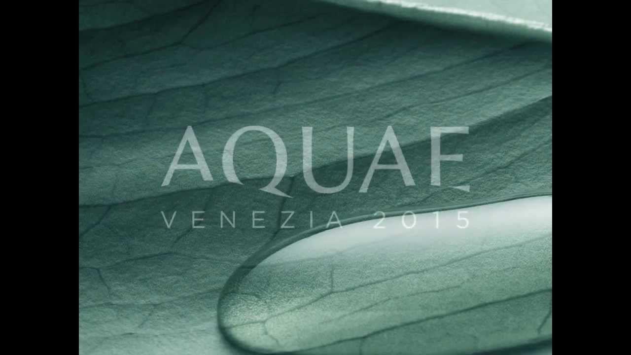 DUE CITTA' E L'ACQUA: Aquae 2015