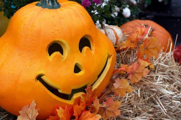 Zucche di Halloween 1
