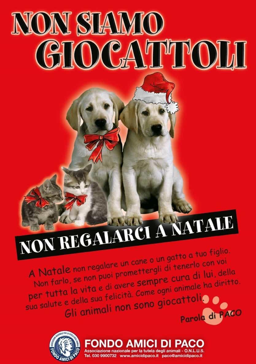 Cosa metti sotto l'albero, regalo o dono? E se ci metti un cane, ricorda che è per Sempre!