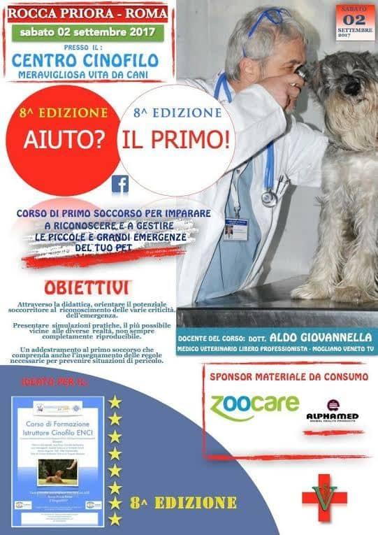 L corso di primo soccorso per cani del dott giovannella for Costo del garage separato