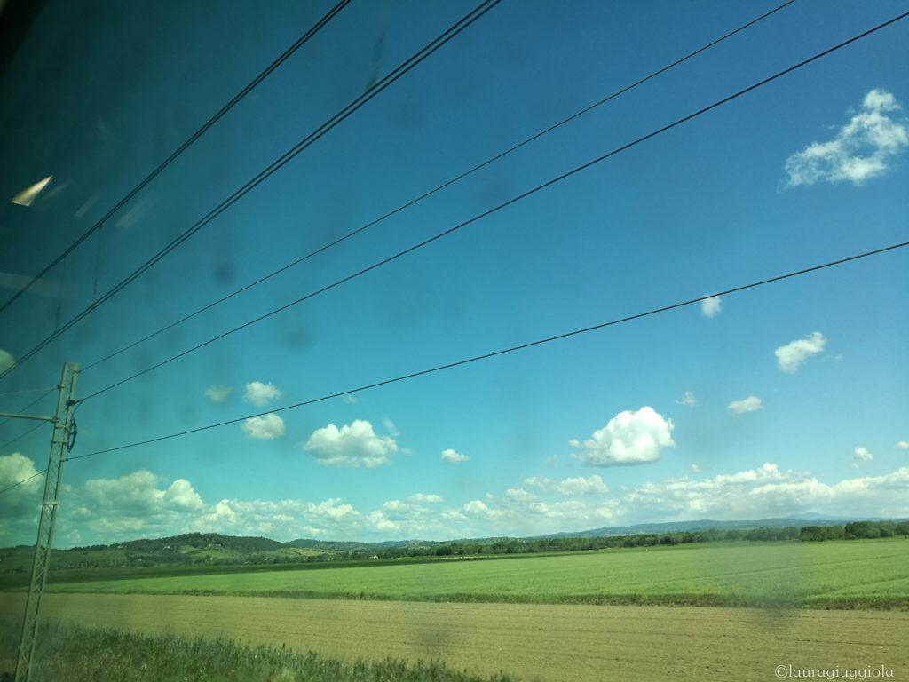 vista dal finestrino treno