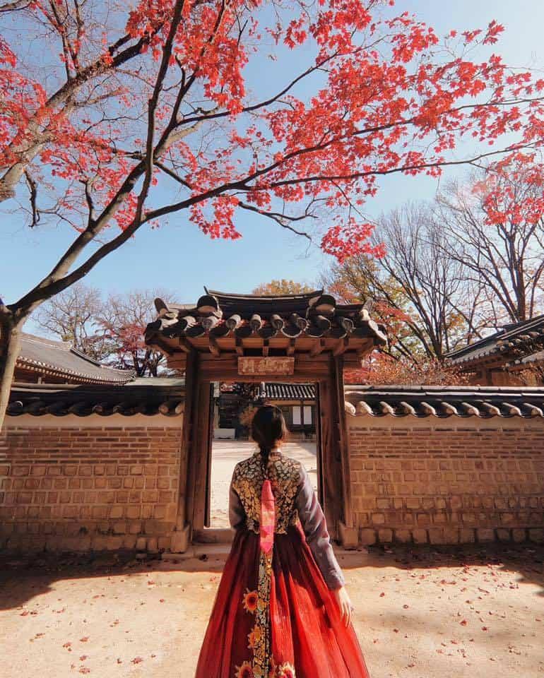 Seoul Manuela Vitulli