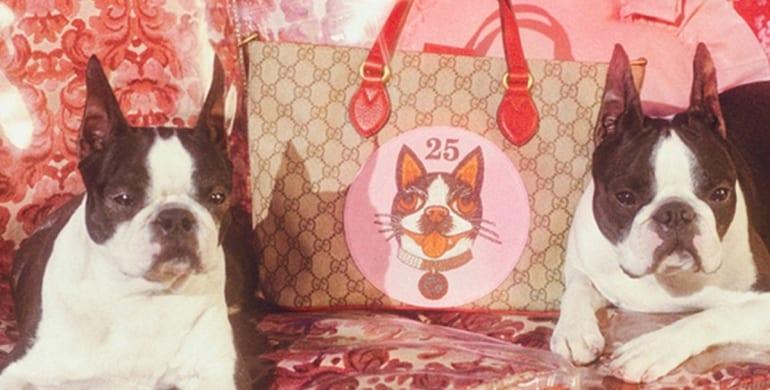 Capodanno Cinese: arriva l'anno del cane