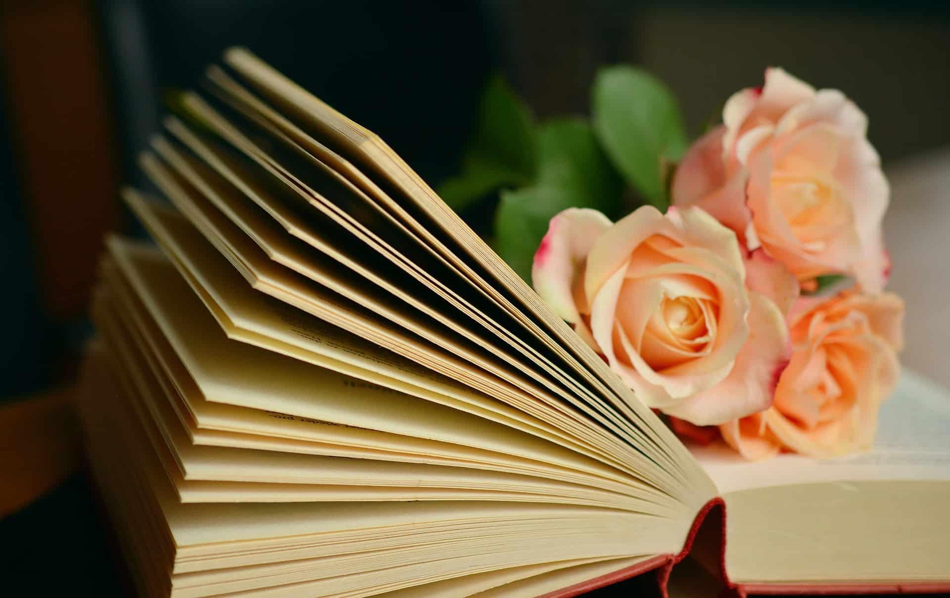 Libri da leggere per il tuo risveglio interiore