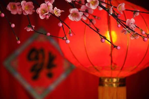 Capodanno cinese: l'anno del maiale