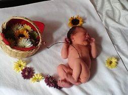 Lotus-Birth-nascita integrale