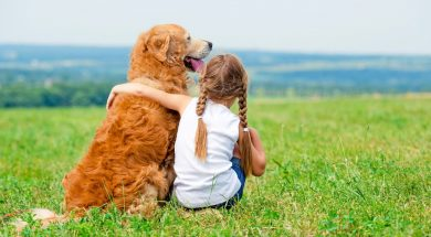 Little girl with golden retriever