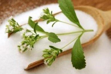 stevia-zucchero