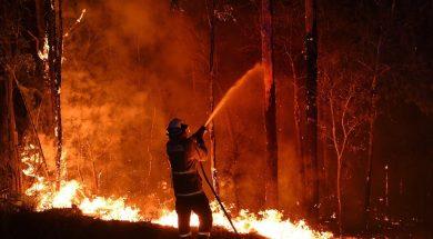 australia brucia
