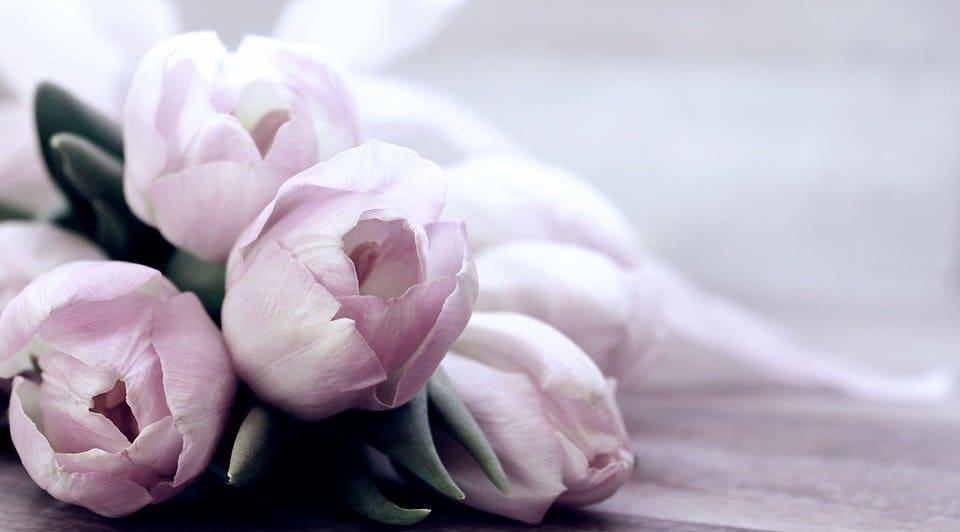 Ecco quali sono vantaggi di avere fiori in casa