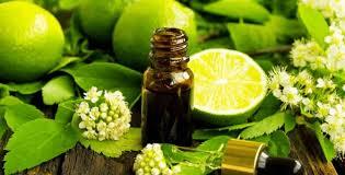 L'olio essenziale bergamotto