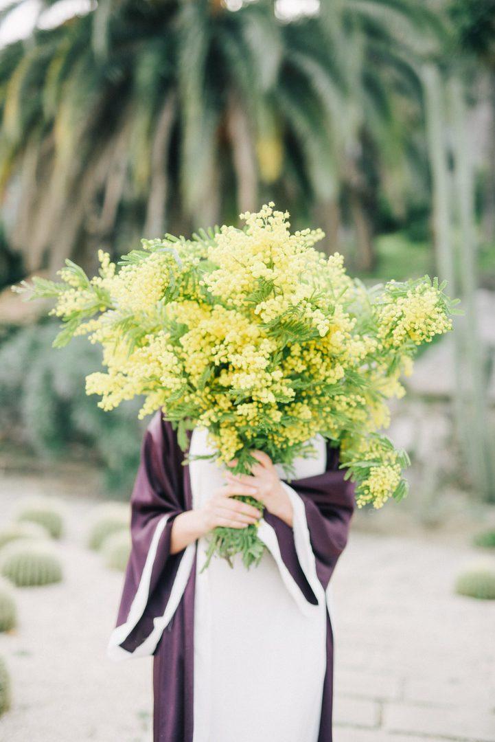festa della donna - mimosa