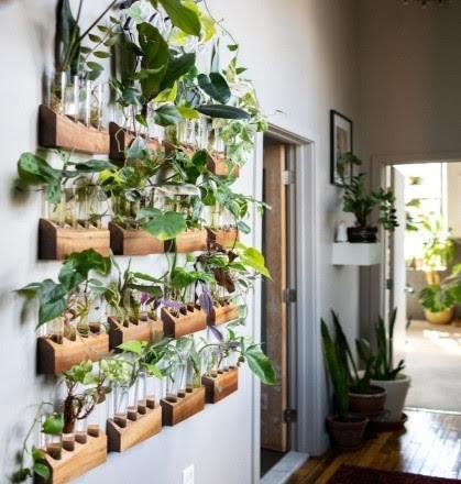 Il giardino in una stanza