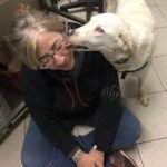 clinica veterinaria duemari