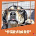 Festival della carne canina di Yulin 2020