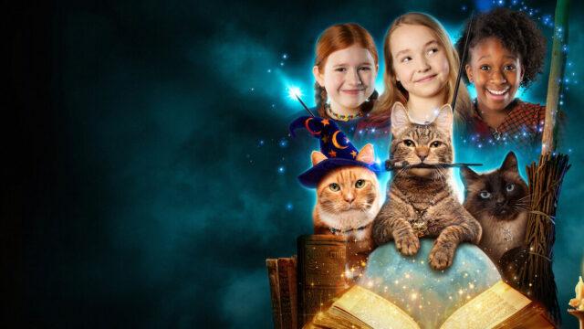 Gatte per magia Netflix ottobre 2021